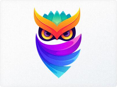 Colorful Owl logo design in 2021