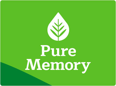 Pure Memory Nature inspired logo design in 2021