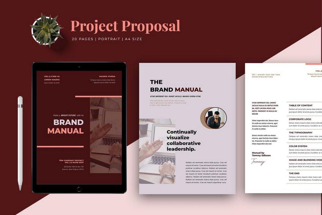 Professional-Brand-Manual-Template