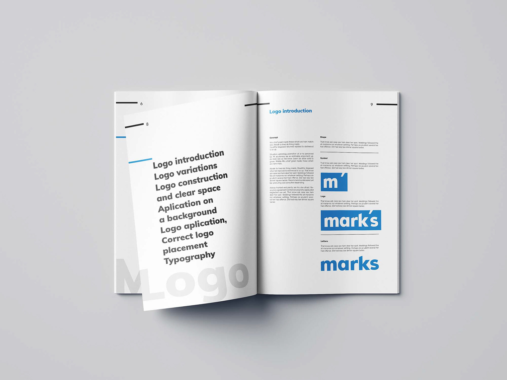 brand style guide template 10 1